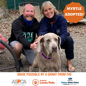 Myrtle adopted.png