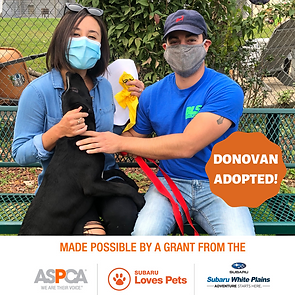 Donovan adopted.png