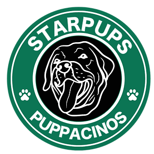 STARPUPS (1).png