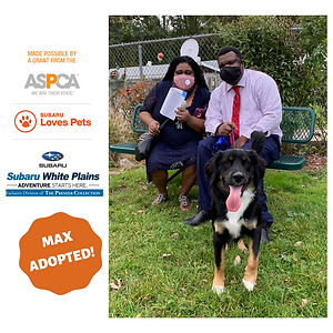 Max adopted.png