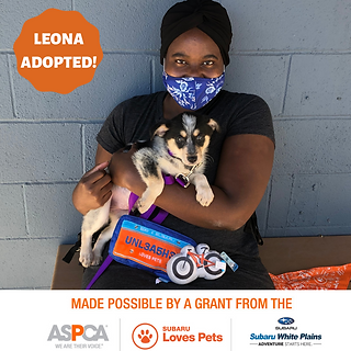 Leona Adopted.png