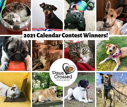 Calendar Winners!.png