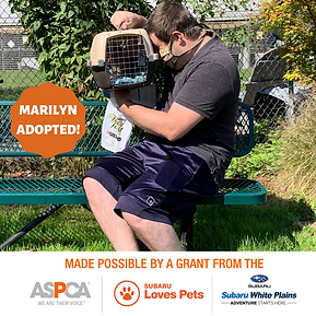 Marilyn Adopted.png