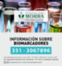 BIOMARCADORES.png