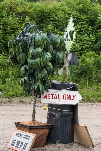 recycle reuse dump-10.jpg