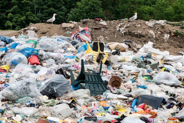 recycle reuse dump.jpg