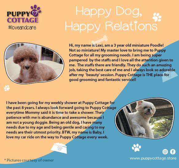 Puppy Cottage Testimonials