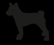 mediumdog_3x-8.png