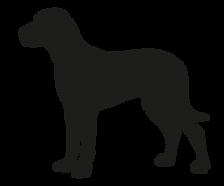 largedog_3x-8.png