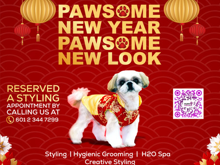 Pawsome New Year = Pawsome New Look Dog Grooming