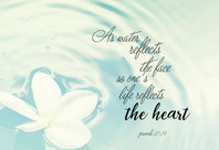 Medical school memories                                             entry 01: the heart
