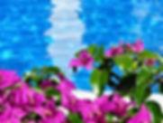 Pestana Grand Flora