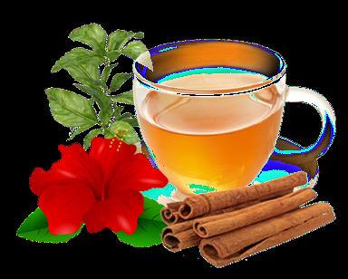 Hibiscus tea with cinnamon and Indian basil (Tulsi)