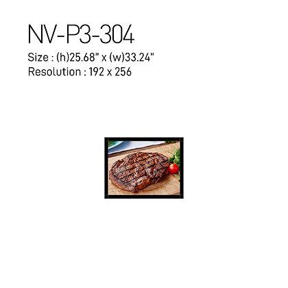 NEX Vision Digital Signage NV-P3 Series