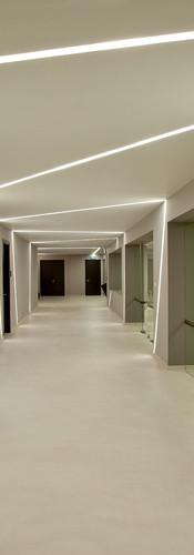 ceiling (5).jpg
