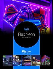 Flex-Neon-2021-4-28.jpg