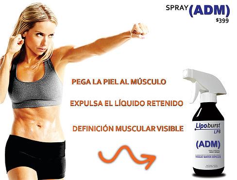 ADM PORTADA WEB.jpg