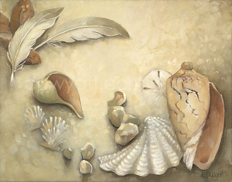 Seashell Medley No1