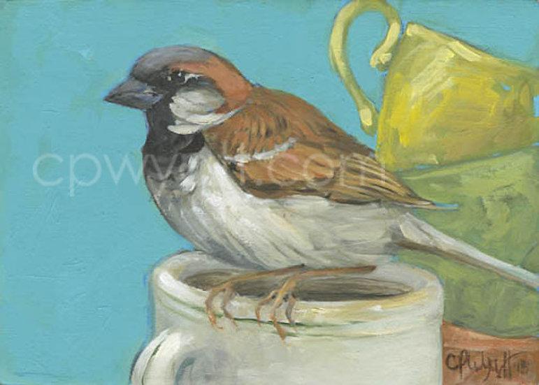 Birds In The Kitchen: Sparrow
