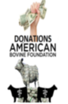 DONATIONS].png
