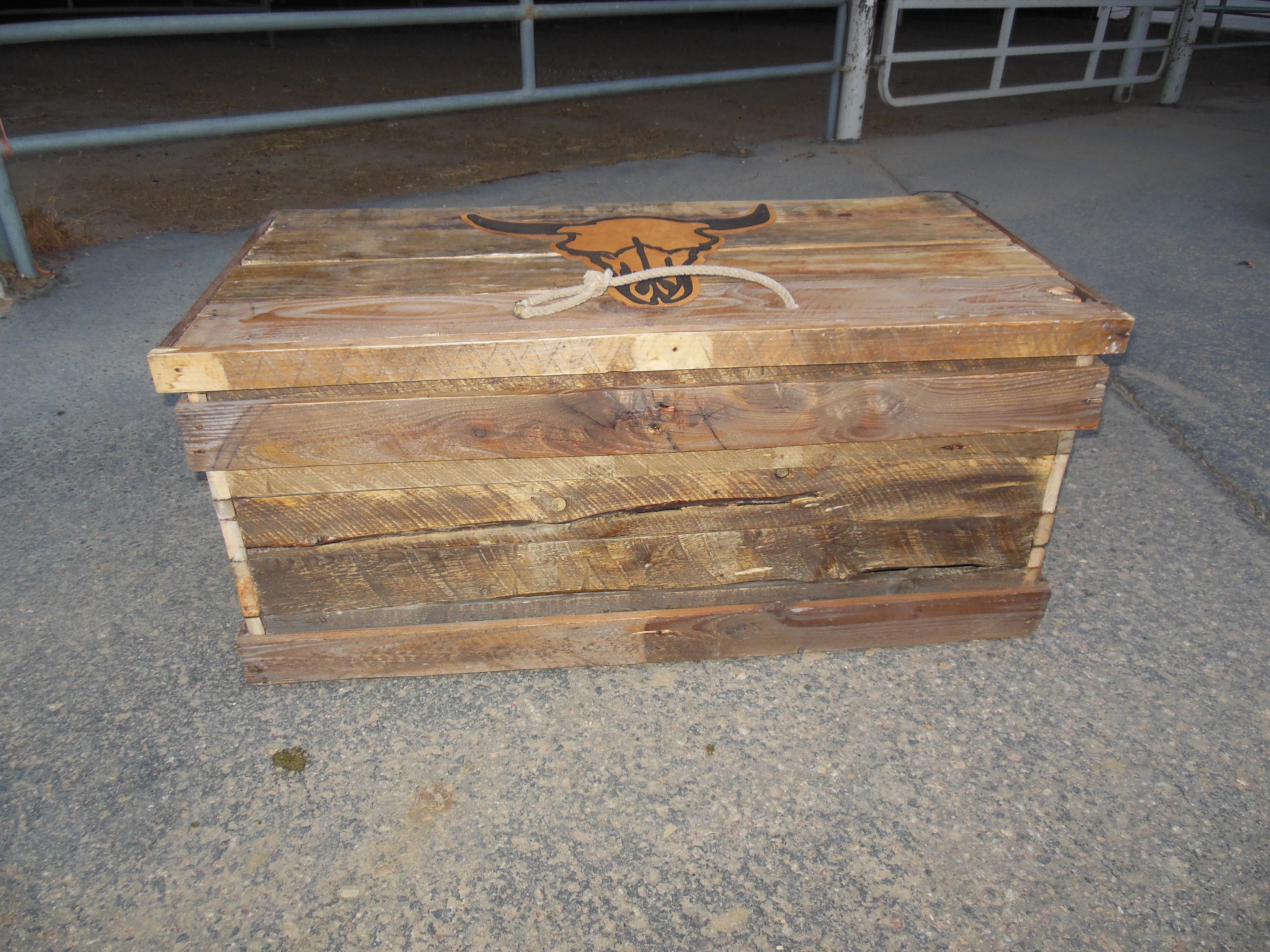 Trunk with Steer Head