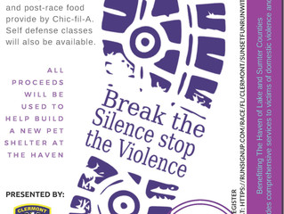Updated Flyer: Break the Silence Stop the Violence 5K event
