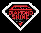 1diamondshine-logo-white.png