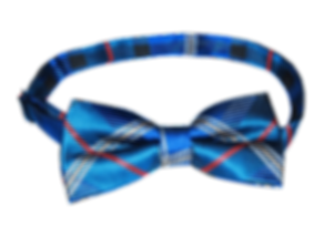 Promotional neckwear, custom-made bespoke corporate uniforms with company logos, silk and polyester pre-formed bow ties.