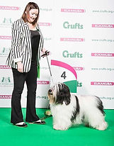 Hero Crufts Group 4
