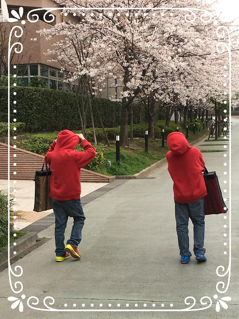演奏の帰り道の散歩