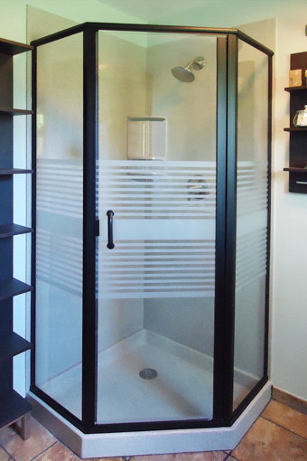 Infinity 1416 Frameless Swing Shower Door