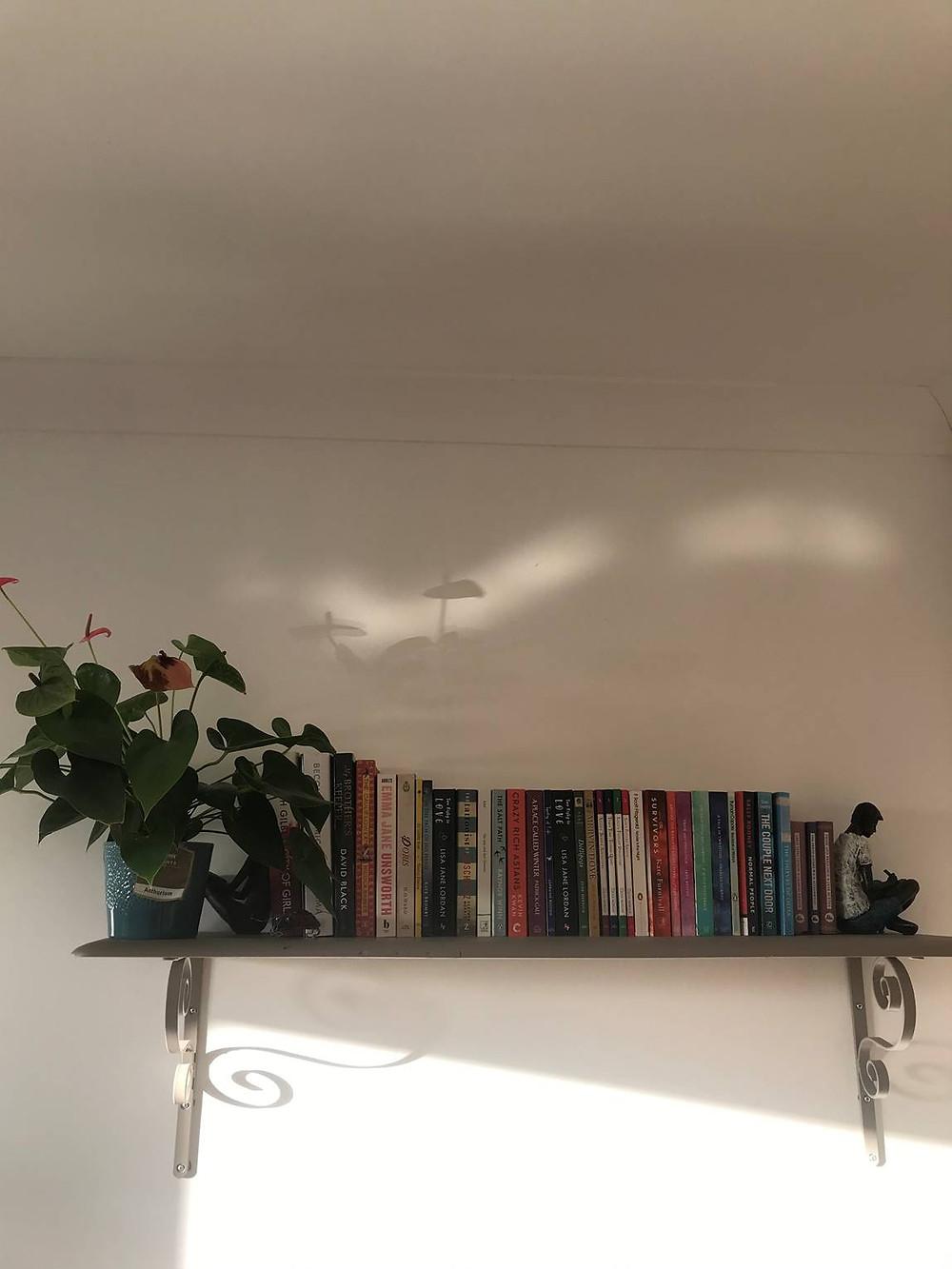 Jemma's bookshelves