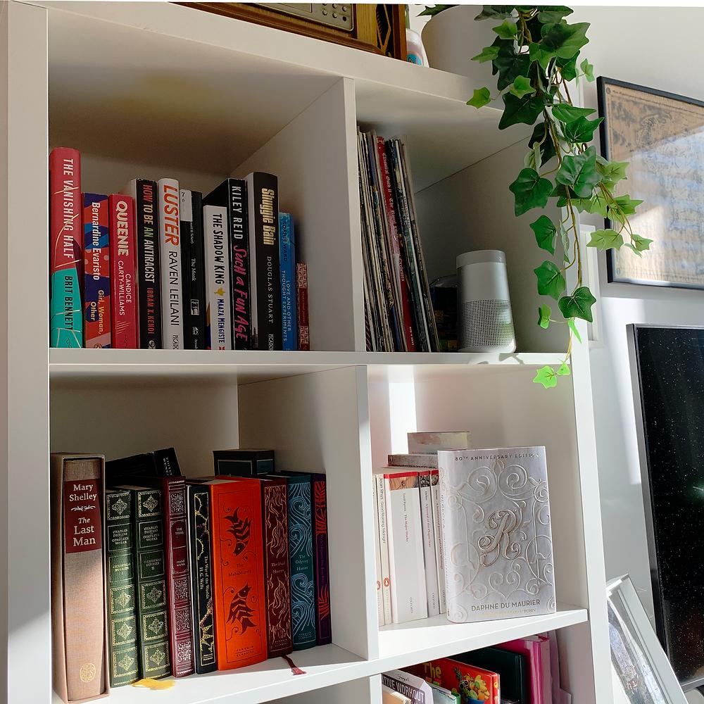 Portia's bookshelves