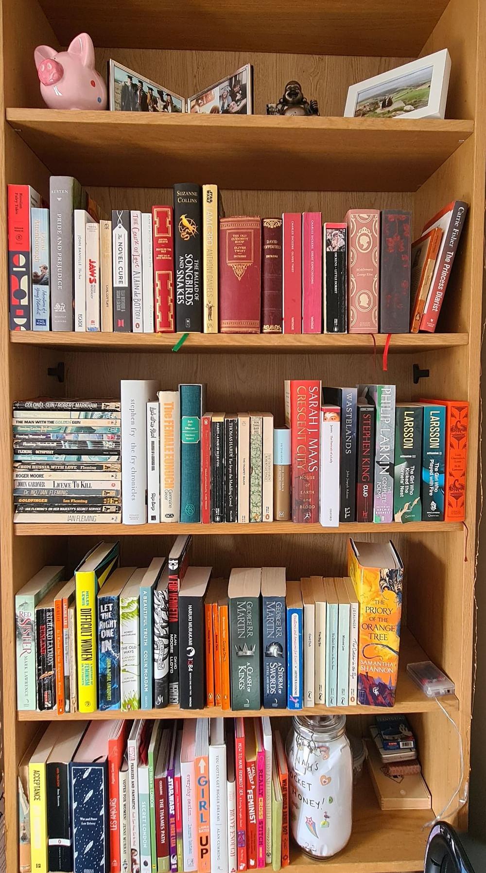 Hannah's bookshelves