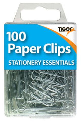100 Paper Clips - Steel