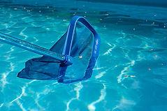 netting pool surface.jpg