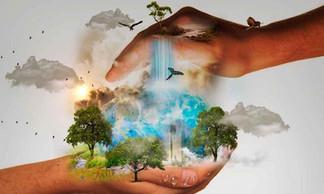 La Creación: la intención amorosa de un Dios creador y dador de vida. (Propuesta desde la encíclica