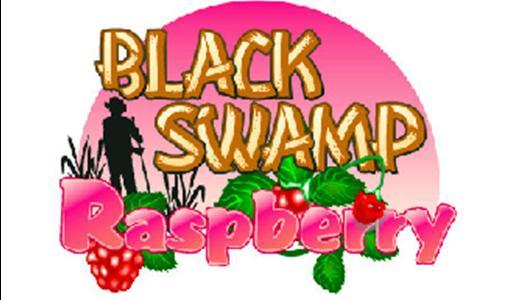 Black Swamp Raspberry Cheesecake