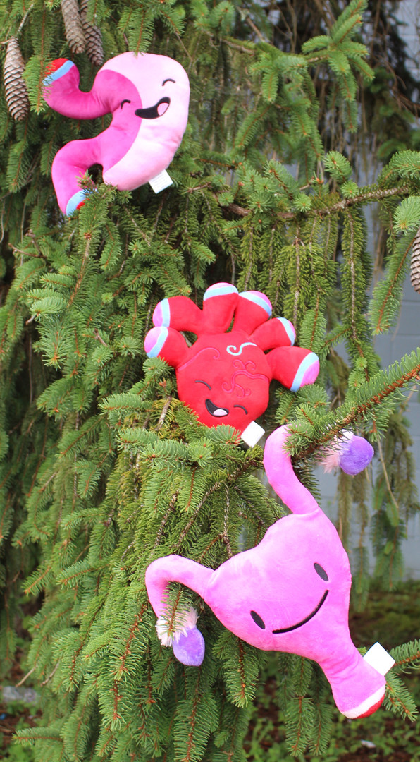 Organ Plush Group Pics - on Christmas tree.jpg