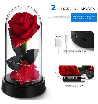 Lighted rose gift set