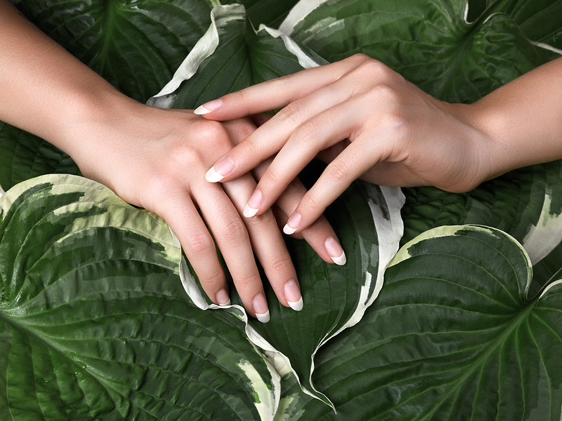 Beautiful Female Palms with Perfect Fren