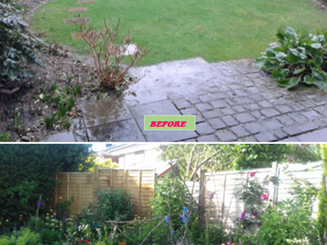 herbaceous before-after.png