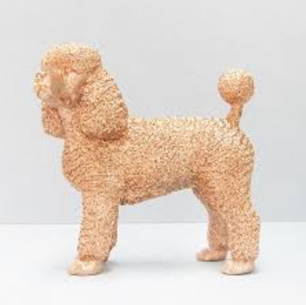 Poodle by White Moose (Gold)