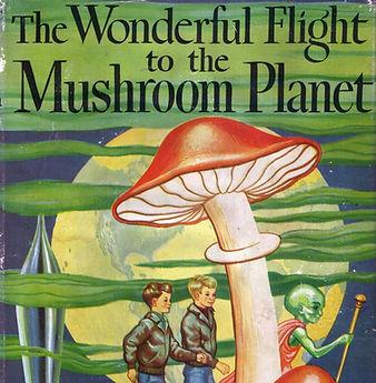 mushroom planet.jpg