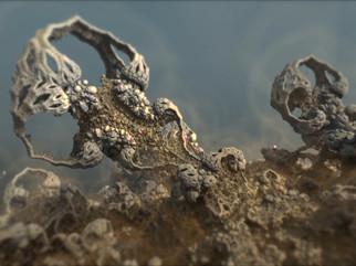 Fossil02_72dpi.jpg