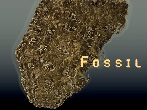 Out now: Fossil - the second Mirage