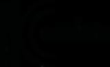 essfein_logo-01.png