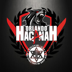 Martial Arts Logo Design