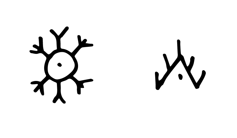 DEQ: The Sun and The Moon 