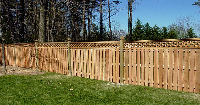 Fencing and Pleaching – Hackberry Hill